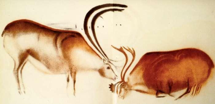Font-de-Gaume,, Painted Caves, Cro Magnan, Prehistoric, Reindeer, Dordogne, Culture, France